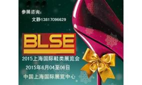 2015第十二届上海国际鞋类展览会