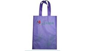 2017上海国际购物袋、包装袋展览会