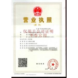 武汉鸿威国博www.188bet.com有限公司