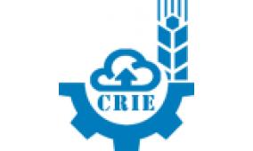 中国西部农村产业展